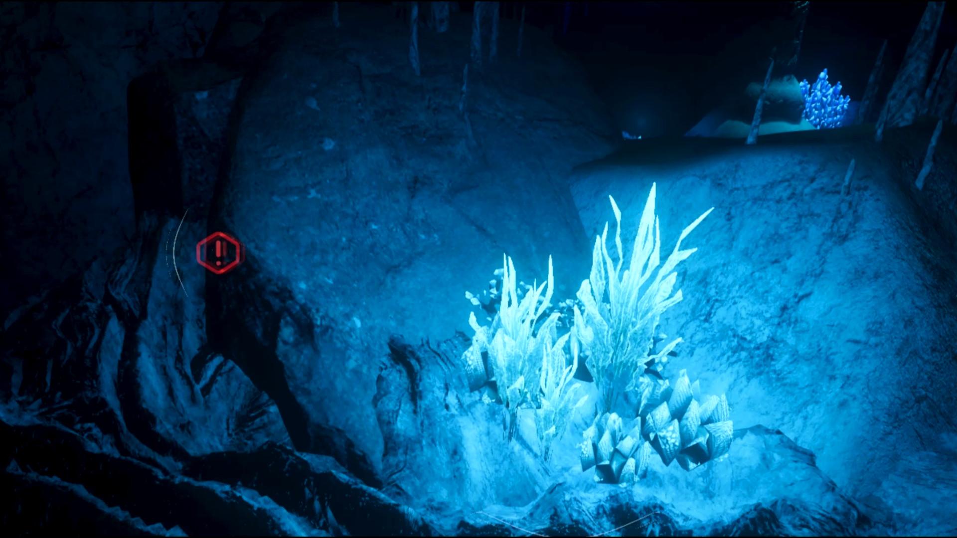 Mit Biolum zum Meeresabgrund abtauchen